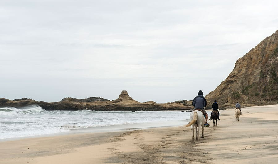 Turismo en Isla Mocha