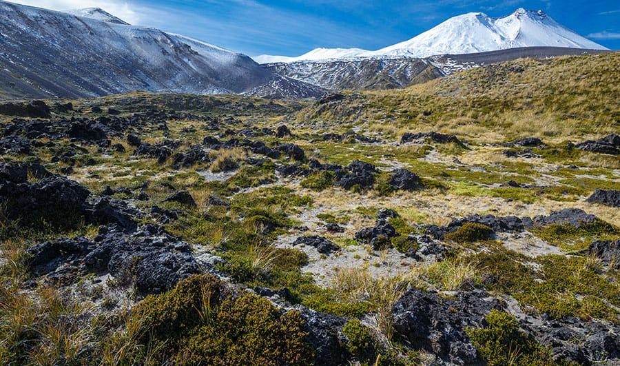 Turismo en el Parque Nacional Puyehue