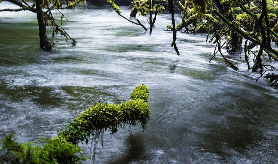 Clima del Parque Nacional Queulat