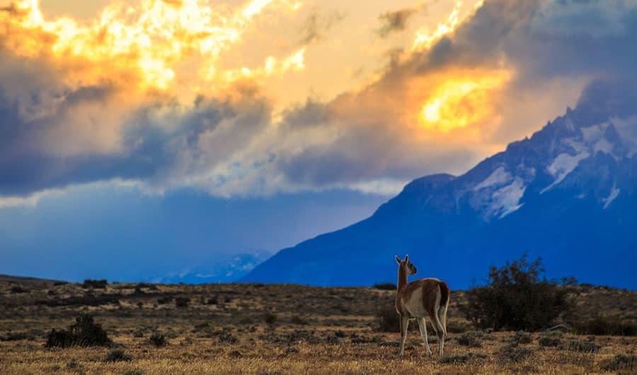 Clima en el Parque Nacional Torres del Paine