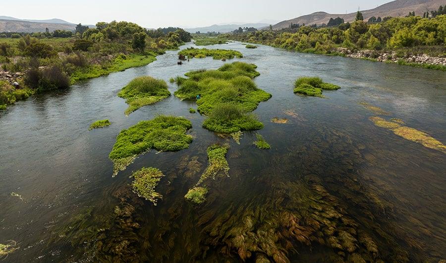 Recomendaciones para visitar Valle del Huasco