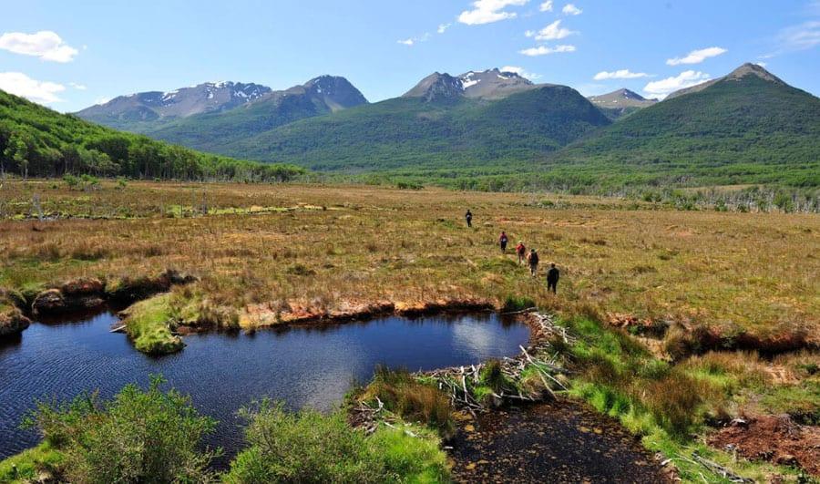 ¿Cómo es la Reserva Nacional Karukinka?