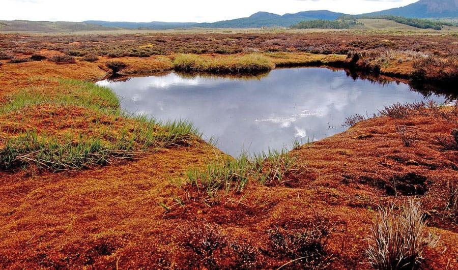 Datos sobre la Reserva Nacional Karukinka