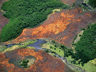 Imagen destacada de la Reserva Nacional Karukinka