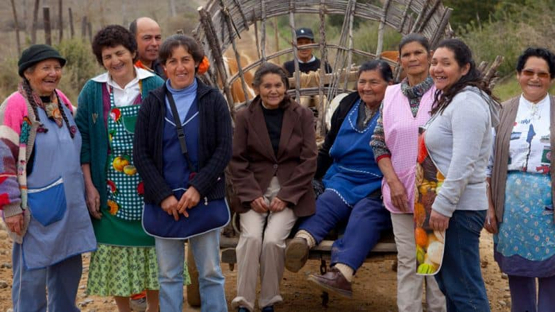 Emprendedoras de Chile: Loceras de Pilén