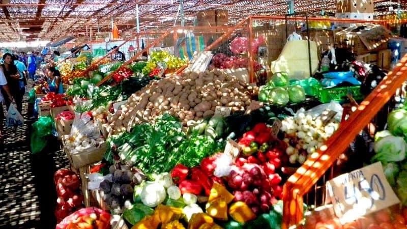 Terminal Agropecuario de Arica