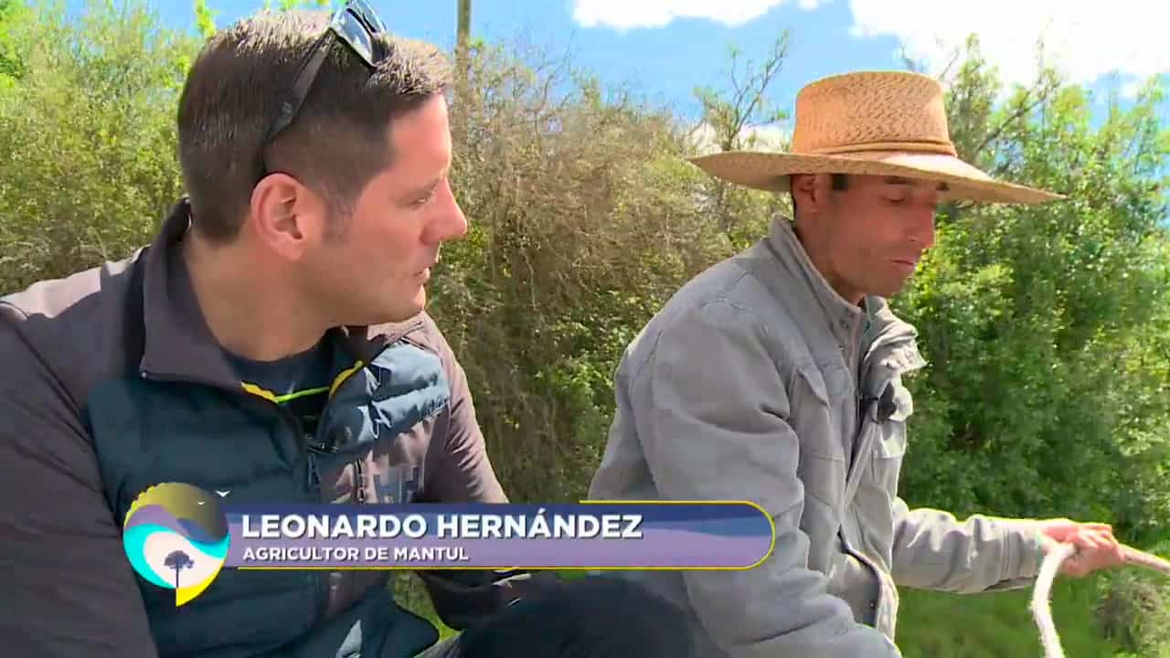 Leonardo Hernández, agricultor de Mantul