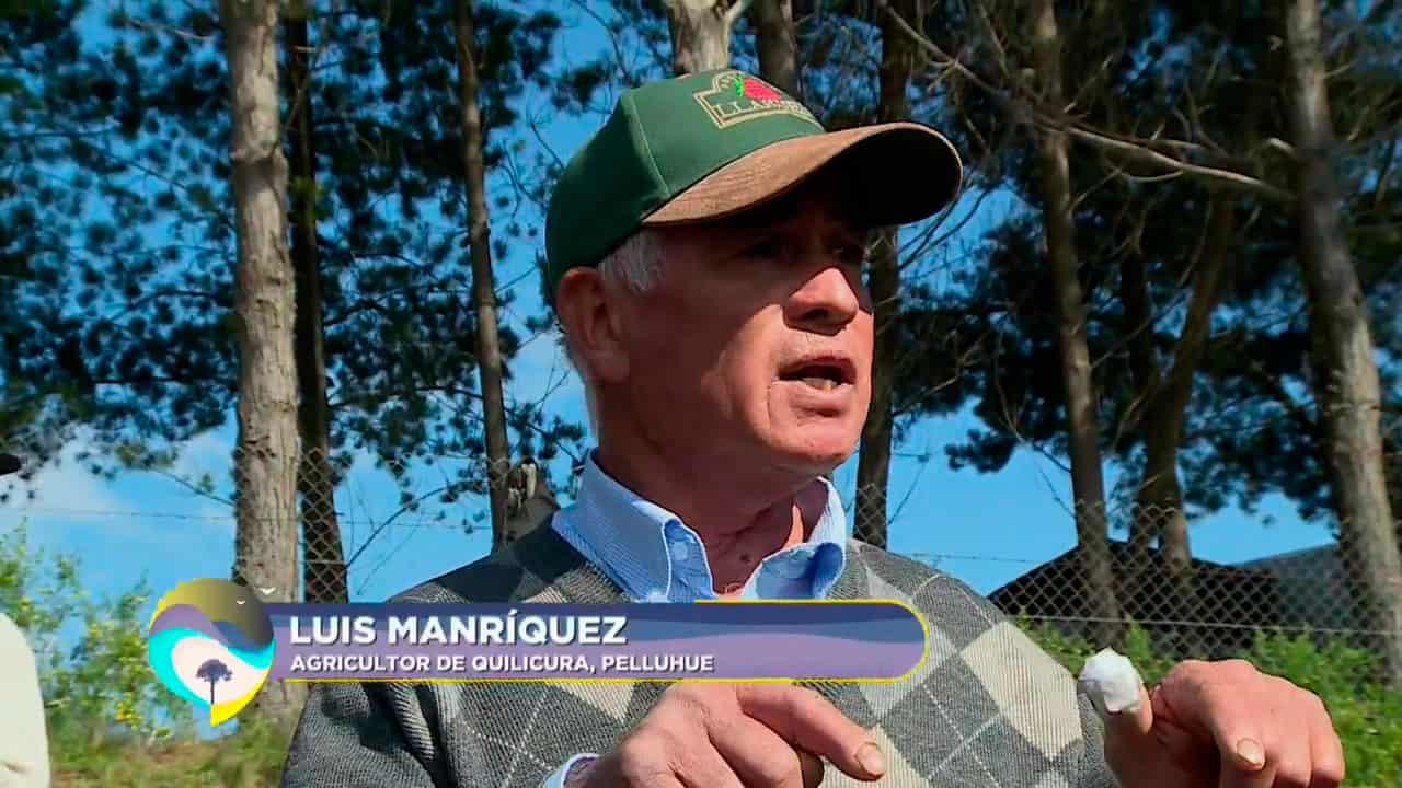 Luis Manriquez, agricultor de Quilicura