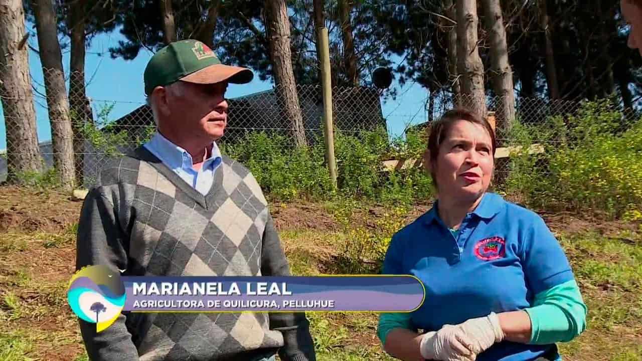 Marianela Leal, agricultora de Quilicura