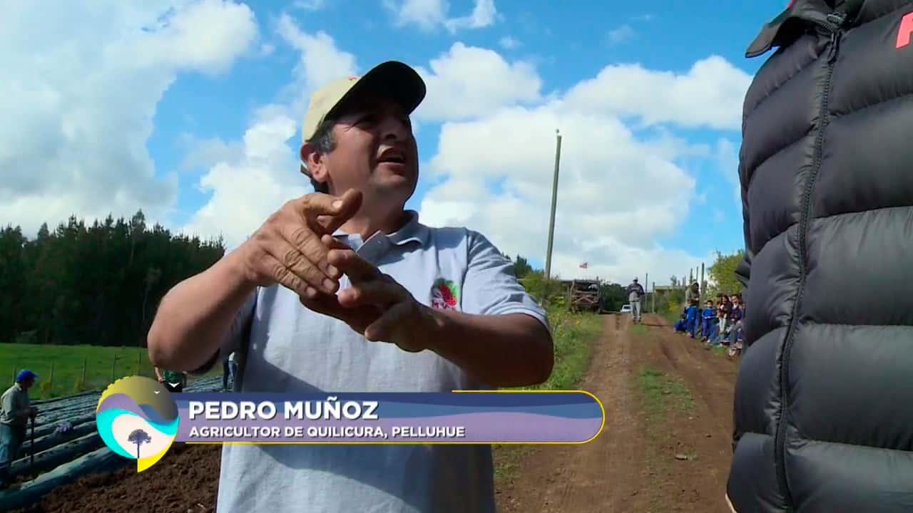 Pedro Muñoz, agricultor de Quilicura
