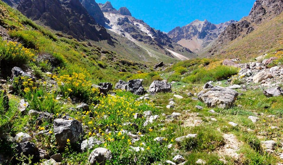 Sobre el Parque Nacional Río Clarillo