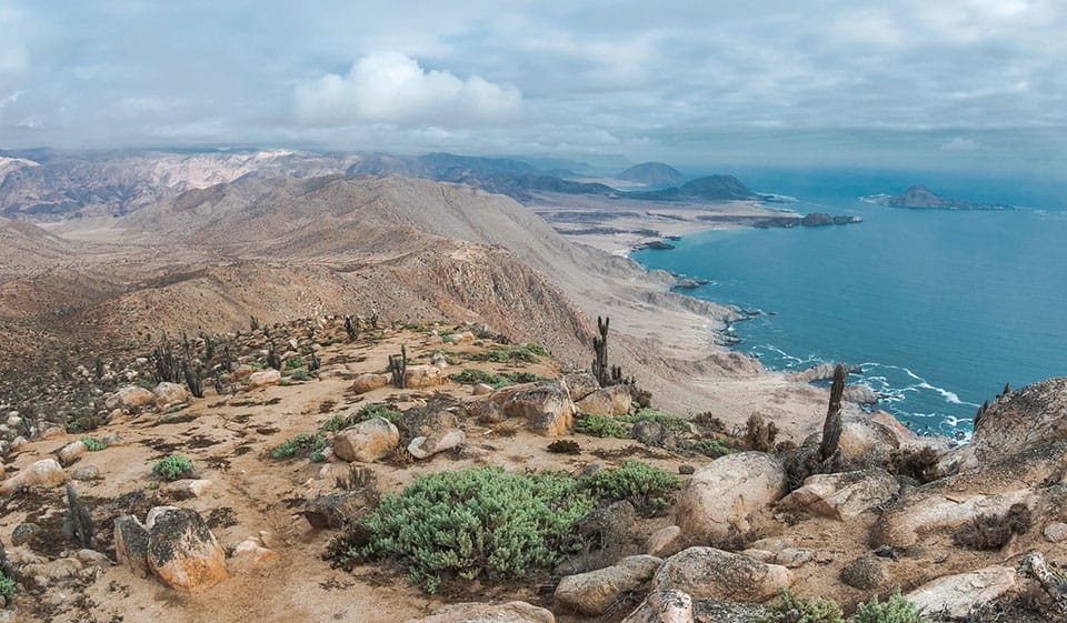 Parque Nacional Pan de Azúcar
