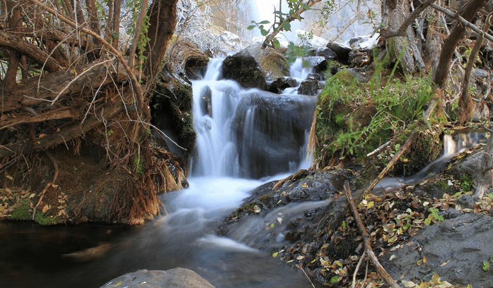 Sendero Canto del Agua