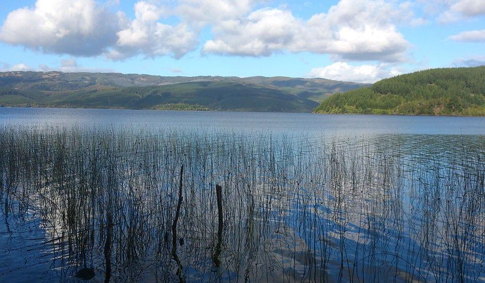Sobre el Lago Lleu Lleu