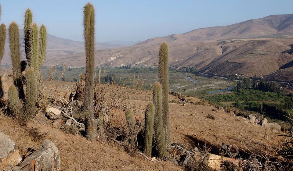 ¿Dónde está el Valle de Choapa?