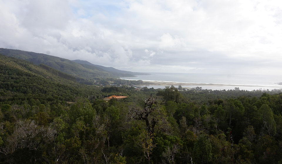 ¿Dónde está el Parque Nacional Alerce Costero?