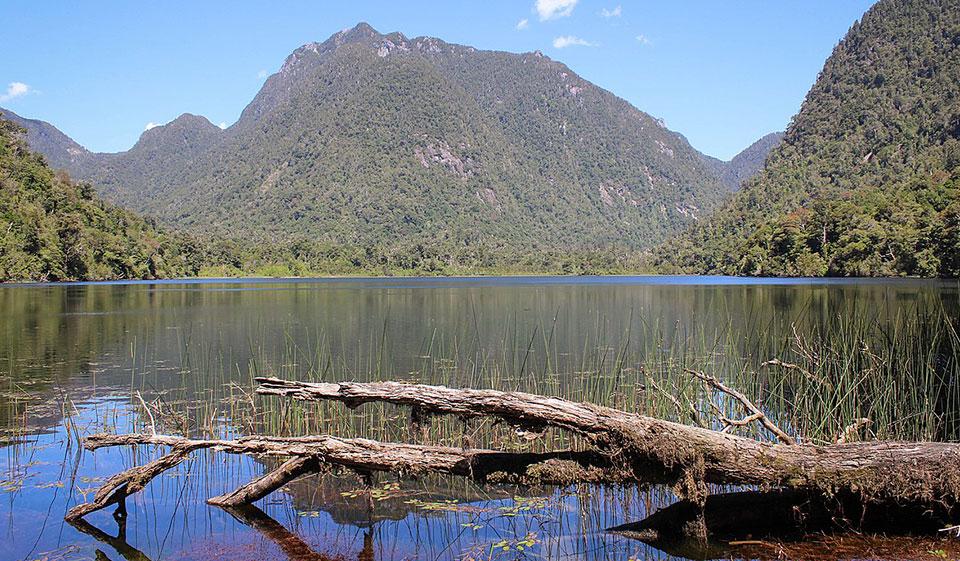 ¿Dónde está el Parque Nacional Alerce Andino?