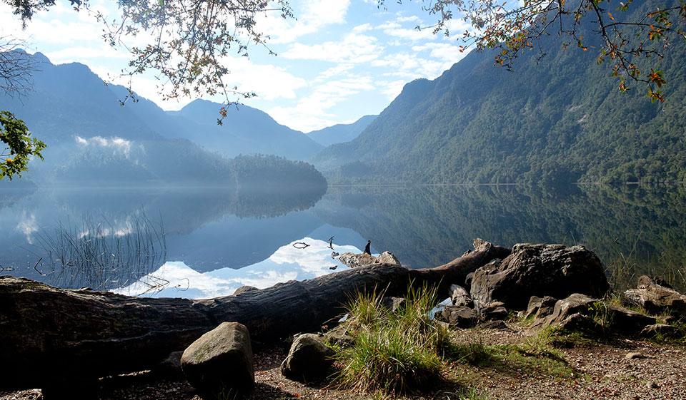 ¿Cómo es el Parque Nacional Alerce Andino?